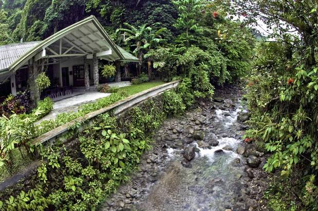 The Canopy Lodge resort in El Valle de Anton Panama is renowned for its prime & A bird-watching adventure in the jungles of Panama - The Globe and ...