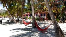 Hammocks beckon in front of cabanas on the beach at Abaka Bay Hotel on Ile a Vache, a short boat ride off Haiti's southwest coast. (Bert Archer)