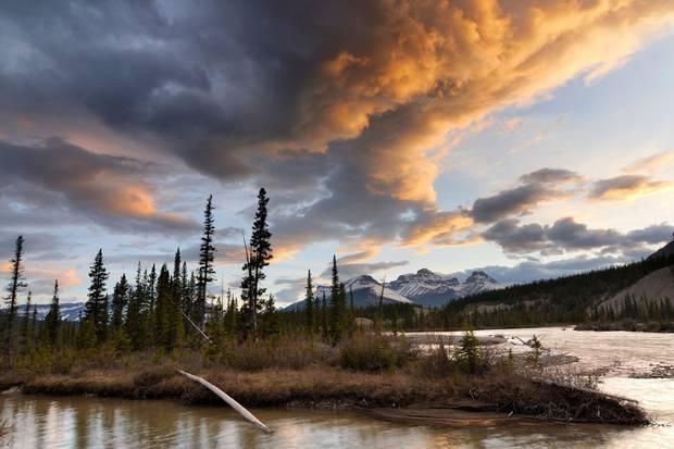The North Saskatchewan River at Mount Erasmus in Alberta's Banff National Park.