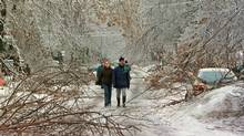 A recent study looked at 140 children born after the Quebec ice storm of 1998. Toddlers whose mothers felt severely anxious about that winter scored 15 IQ points lower than children whose mothers experienced less stress and adversity during that period. (RYAN REMIORZ)