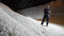 Trevor Berg, a general manager with PotashCorp, holds a handful of chicklet potash. Much lower prices may make investing in any potash company – major or junior – 'uneconomic.' (David Stobbe/REUTERS)