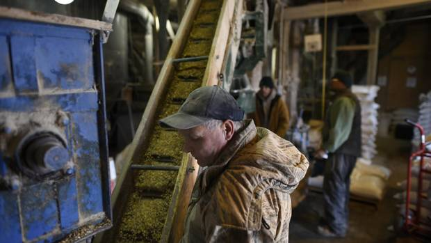 Although Shelburne is quickly becoming a bedroom community, it's still a farming town: Dave Stitt, left, is a miller with Sharpe Farm Supplies, keeps an eye on feed moving on a hopper.