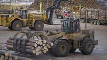 Forestry analyst Paul Quinn predicts that U.S. housing recovery and Chinese demand will raises forest company stocks. (JOHN LEHMANN/THE GLOBE AND MAIL)