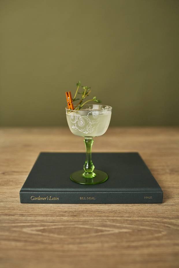 Garden Shrub cocktail.