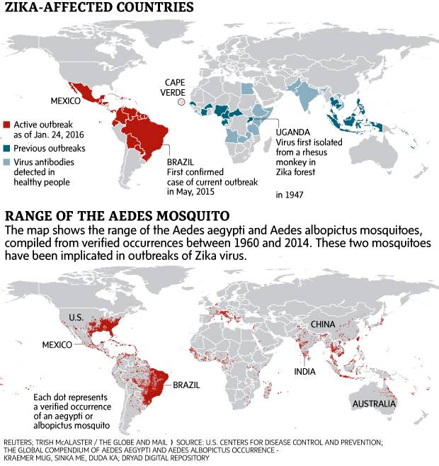 What you need to know about the Zika virus and its hardy and