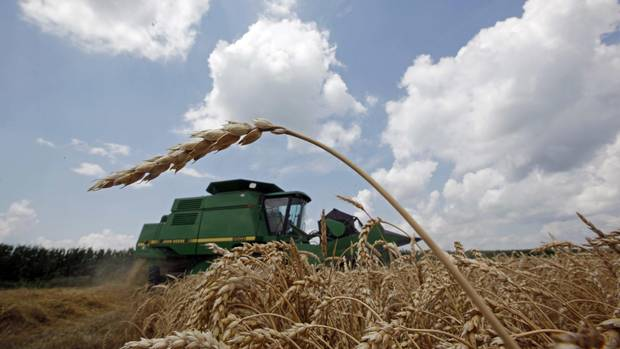 For U.S. farmers, NAFTA secures access to stable, lucrative markets in Mexico and Canada that now account for over a quarter of U.S. farm exports. Now they fear this access could become a bargaining chip in efforts to get a better deal for U.S. manufacturers.