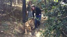 A Facebook photo shows Lauren Fagen volunteering at the Moholoholo Wildlife Rehabilitation Centre before she was mauled by two lions.