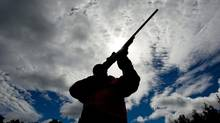 A gun owner checks the sight of his rifle at a hunting camp west of Ottawa on Sept. 15, 2010. (Sean Kilpatrick/The Canadian Press)