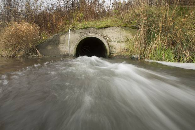 Treated sewage flows into the Grand River from the Hespeler Water Treatment in Waterloo, Ontario on Saturday, November 7, 2015. Two years ago, Kitchener-Waterloo completed a $700-million upgrade of its sewage treatment plants and researcher has subsequently identified improvement in the Grand River habitat.
