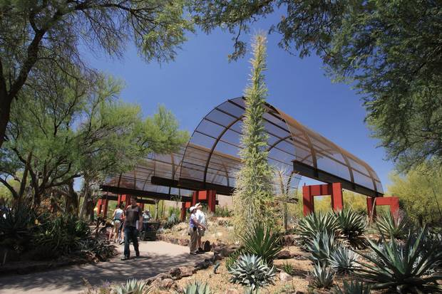 The Desert Botanical Garden Succulent Gallery.