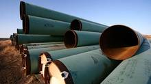 Some 15,000 pieces of pipe for TransCanada Corp.'s Keystone XL pipeline lie in a field in North Dakota, April 23, 2013. The Gascoyne pipe yard holds 350 kilometres of pipe, nearly a third of Keystone XL's route from Hardisty, Alta. to Steele City, Neb. (Nathan VanderKlippe/the globe and mail)