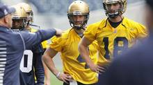 Winnipeg quarterback Buck Pierce, centre, missed most of the 2012 season. (John Woods/THE CANADIAN PRESS)