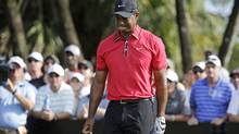 Tiger Woods (Associated Press)