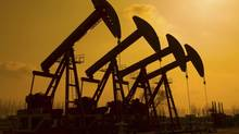 Crescent Point Energy is the largest holding in the Franklin Bissett Canadian High Dividend Fund. Oil pumps thinkstock (Huyangshu/thinkstock)