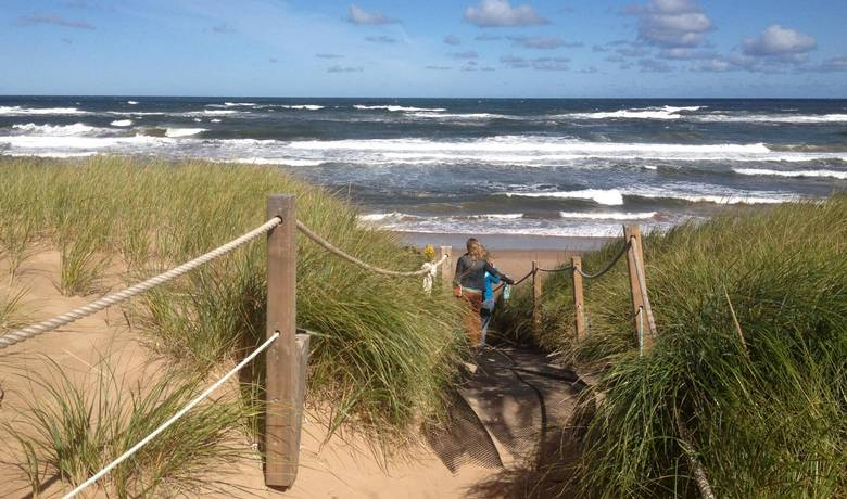Greenwich Beach at Prince Edward Island National Park features red sand, green marram grass and blue water.
