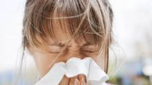 Various foods and nutrients can ease the symptoms of allergies. (Thinkstock)