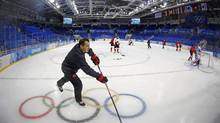 Coach Kevin Dineen says players who skate for Team Canada 'play the game with a certain set of standards.' (MARK BLINCH/REUTERS)