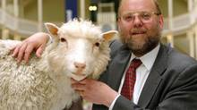 Professor Ian Wilmut of the Roslin Institute is seen with the preserved body of Dolly, the world's first cloned sheep who died on Feb. 14, 2003, and is now on permanent display at Edinburgh's Royal Museum. The birth of Dolly, on July 5, 1996, was heralded as a scientific landmark but triggered heated discussions about the ethics of cloning. Wilmut was the leader of the Roslin Institute team that cloned Dolly. (MAURICE MCDONALD/AP)