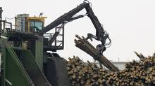 Tembec's softwood lumber plant in Senneterre Que. (Jacques Boissinot/The Canadian Press/Jacques Boissinot/The Canadian Press)