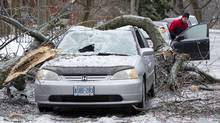 Damage from the storm in the Cabbagetown neighbourhood in Toronto, Dec. 23, 2013. (Kevin Van Paassen/The Globe and Mail)