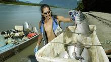 Todd Douglas of the Cheam First Nation unloads his catch after fishing for salmon in the Fraser River near Harrison Lake B.C. July 21, 2003. Sport fishermen call the native fishery poaching, but the Cheam say they are affirming their aboriginal right to fish. (John Lehmann/The Globe and Mail/John Lehmann/The Globe and Mail)