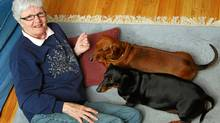 Like humans, dogs could benefit more from proper diet and exercise than just relying on drugs, says former breeder Geri Marshall of Dartmouth, N.S. (PAUL DARROW FOR THE GLOBE AND MAIL)