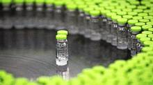 Vials of H5N1 flu vaccine by Beijing-based drug maker Sinovac Biotech Ltd. are seen during production at Sinovac facilities in Beijing, Nov.24, 2011. (Andy Wong/Andy Wong/AP)