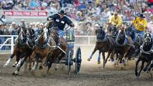 Teams compete in a chuckwagon race at the Calgary Stampede Rodeo in Calgary, Alberta on July 13, 2012. (Todd Korol/REUTERS)