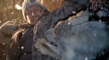"A wolf takes a bite out of Liam Neeson in a scene from ""The Grey."" (Courtesy of eOne Films)"