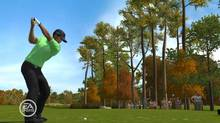 Golfer Tiger Woods in a screengrab from the Electronic Arts Tiger Woods video game. (The Canadian Press)