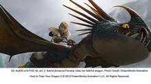 How to Train Your Dragon 2 makes a strong case for the will of the collective trumping that of the individual.