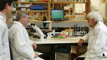 Prime Minister Stephen Harper speaks to scientists at the National Microbiology Laboratory in Winnipeg on May 19, 2009. (JOHN WOODS/John Woods/The Canadian Press)