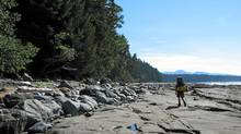 The West Coast Trail on Vancouver Island, B.C. (JONATHAN HAYWARD/CP)