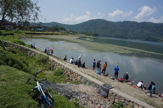 People gather along the banks of Phewa Lake, Pokhara, to catch fish.