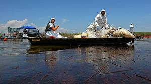 Contract workers from BP ferry oil soaked waste to a pickup point as other workers use skimmers to clean oil from a marsh near Venice, La.