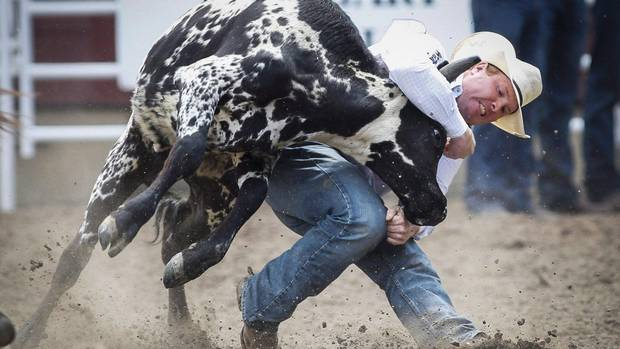 Tanner Milan, of Cochrane, Alta., competes in the steer wrestling event during Calgary Stampede rodeo action in Calgary, in a July 5, 2015, file photo.