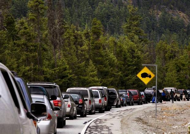 People turned off their engines and got out of their cars as traffic was backed up ten kilometers out of Pemberton en route to the Pemberton Music Festival on July 27, 2008.