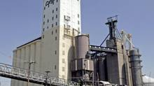 Cargill grain elevators in East St. Louis is a storage and shipping facility along the Mississippi River where grains are loaded onto barges for shipment south along the river to other ports in a file photo. (JAMES A. FINLEY/AP)