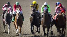 Jockeys battle for the lead as they make their way into the first turn at Hastings race track in Vancouver August 24, 2011. (John Lehmann/The Globe and Mail/John Lehmann/The Globe and Mail)