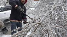Pradeep Parbhudial clears fallen tree limbs from his home in Brampton, foaice storm which knocked out power to thousands of homes. (Kevin Van Paassen/The Globe and Mail)