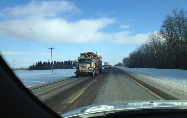 Spruce trees (left) and aspen (right) are shown along the highway to Fort McMurray in wintertime.