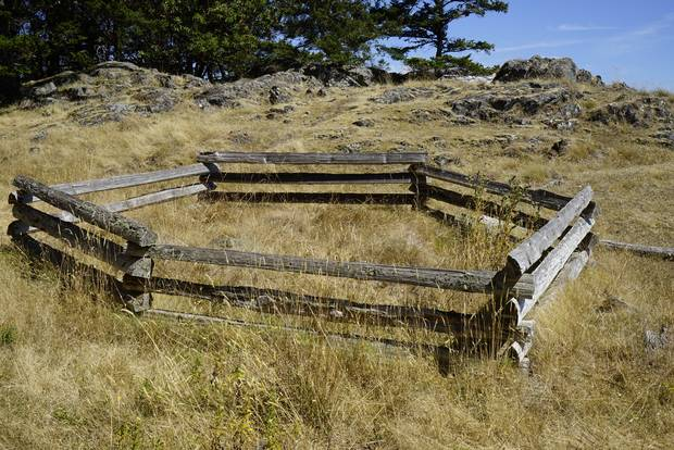 On D'Arcy Island, the leper colony that was established in 1891 after five men with leprosy were discovered in Victoria's Chinatown, people were sent, over 30 years, to live and, eventually, die.