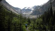 Hiking to Stanley Glacier in Kootenay National Park. (Megan Robertson/Megan Robertson)