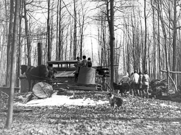 A tank wagon and sap house for maple syrup production in rural Ontario, 1926.