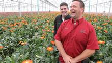 Joshua Bulk, left, and Ralph DeBoer of Rosa Flora Growers Ltd. in Dunville, Ont., among their flowers. (GLENN LOWSON FOR THE GLOBE AND MAIL)