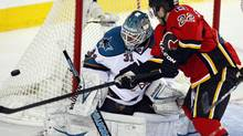 San Jose Sharks' goalie Antti Niemi, left, from Finland, watches the puck as Calgary Flames' Lee Stempniak swats at it during third period NHL hockey action in Calgary, Alta., Sunday, Jan. 20, 2013. The San Jose Sharks beat the Calgary Flames 4-1. (Jeff McIntosh/THE CANADIAN PRESS)