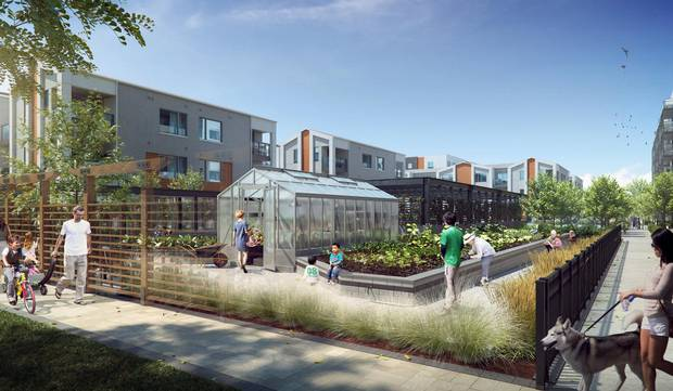 The project will feature a greenhouse, potting areas and programs to promote urban agriculture.