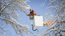 Many power outages were caused by ice-coated branches tearing down wires. (Kevin Van Paassen/The Globe and Mail)