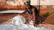 Ndaloswa Bekinala sifts maize flour outside her home in Thyolo, one of the poorest districts of Malawi. The continuing high price of food has made it difficult for her to afford three meals a day for her family. (Erin Conway-Smith)
