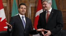 Mexico's then-President-elect Enrique Pena Nieto speaks during a meeting with Prime Minister Stephen Harper in Ottawa on Nov. 28, 2012. (CHRIS WATTIE/REUTERS)